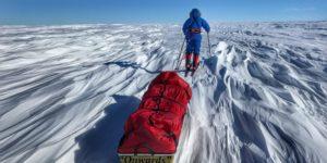Спекотне літо в Антарктиці, або уроки виживання від О'Бреді, Радда та інших відчайдухів